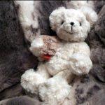 CARMA Plaids Teddy