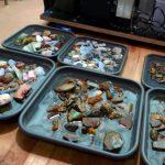 Opal Rohsteine